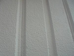 大芦邸 外壁 色